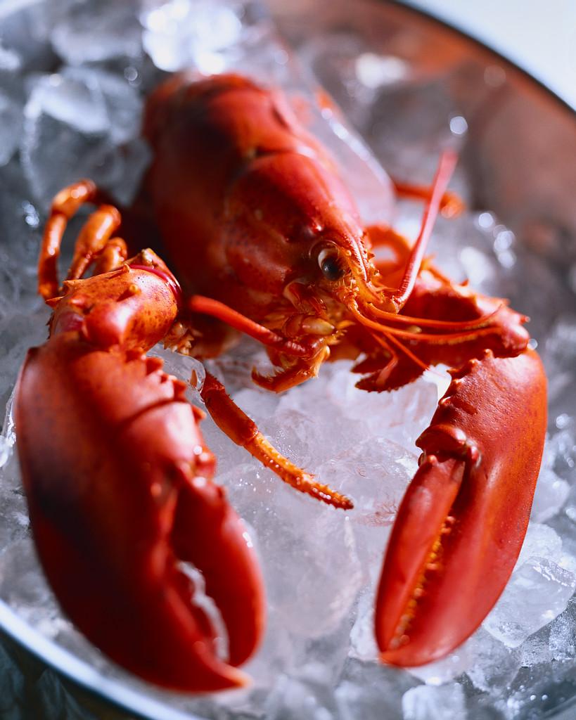 Feast of seafood
